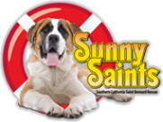 Sunny Saints, Southern California St. Bernard Rescue